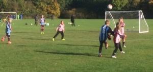Olivia strikes on goal